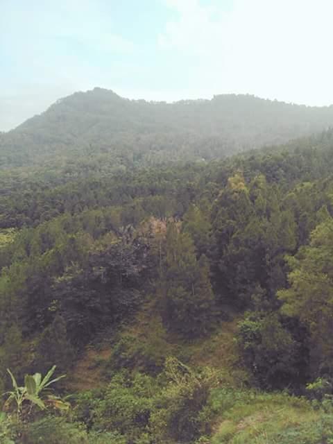 Pemandangan Alam Pekodokan Desa Wlahar Wangon Blog Inspirasi Motivasi Informatif